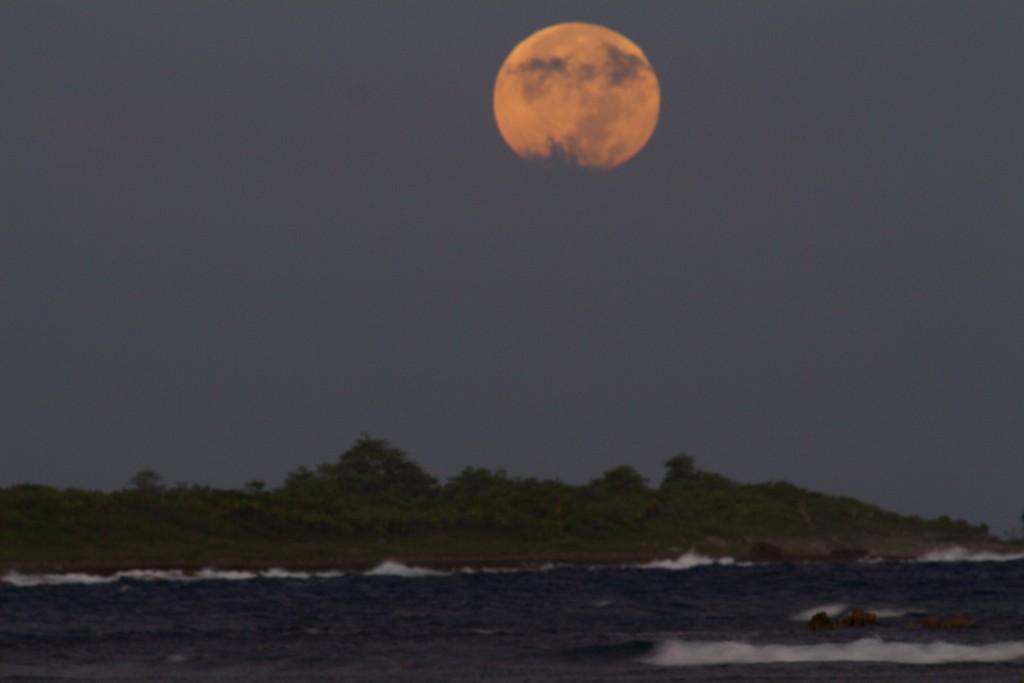 Jamaican christmas moon 2015